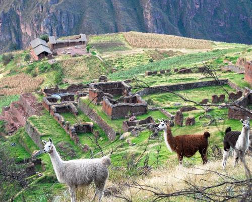 huchuy qosqo machu picchu trekking tours peru