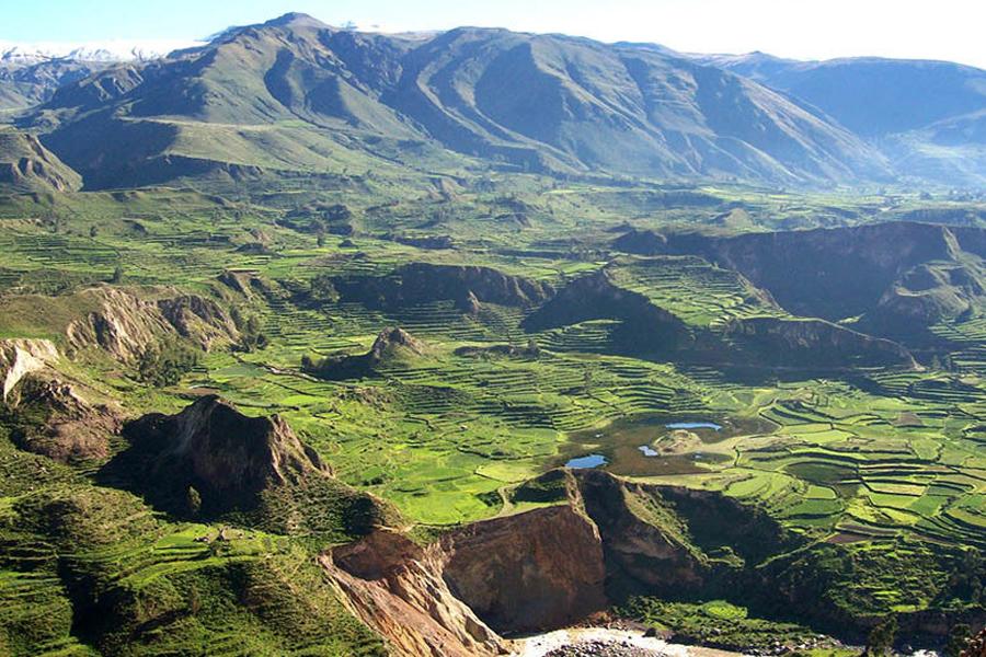 arequipa cañon colca inka jungle treks toursperumschupicchu.com