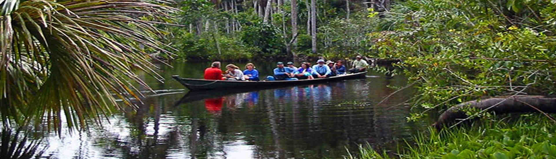 ecoamazonia ecologico toursperumachupicchu