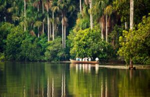 TPM-Amazonia2