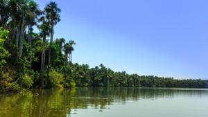 TPM-Amazonia3