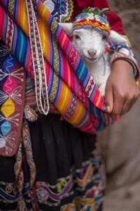 TPM-Cusco4